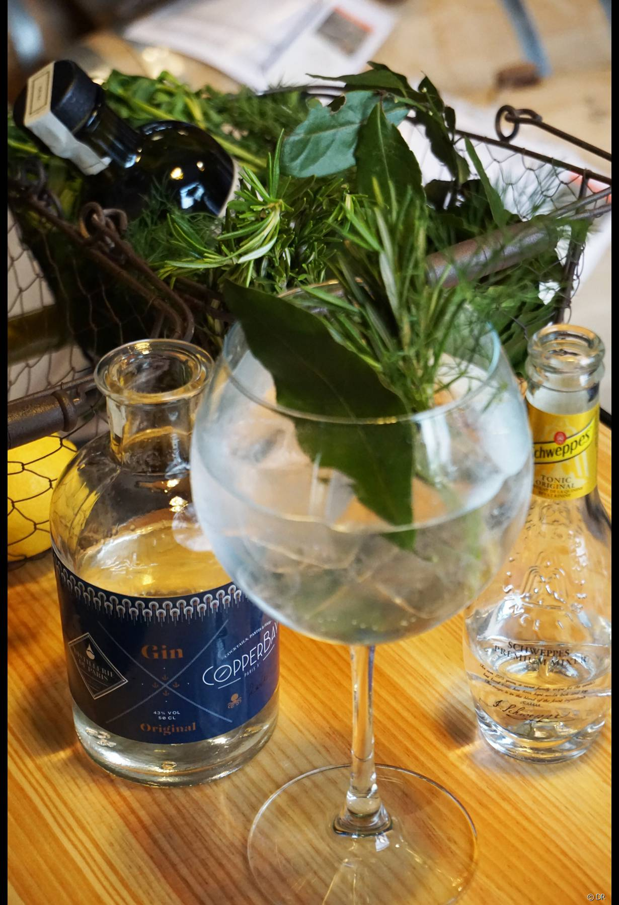 Les gins du CopperBay - Photo 2