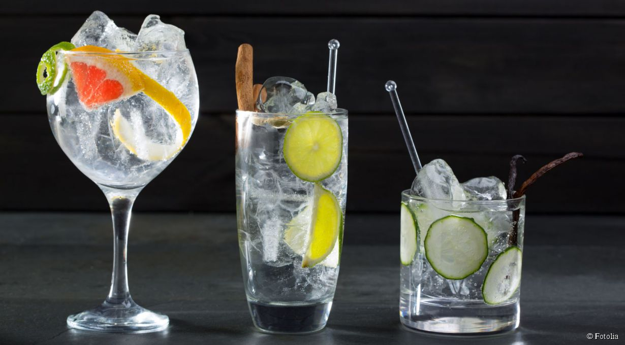 http://static1.villaschweppes.com/articles/3/67/33/@/24649-l-experience-gin-tonic-article_top-2.jpg