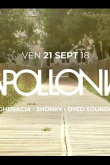 Apollonia all night long à La Clairière