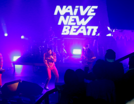 Chronique : la Xmas Party des Naive New Beaters