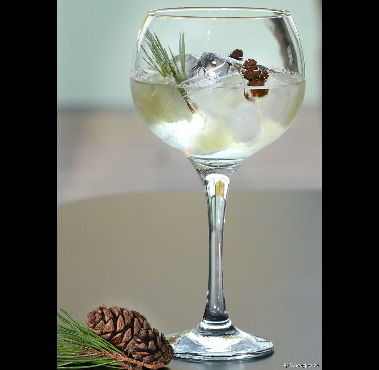 Le cocktail Gin Tonic de Noël