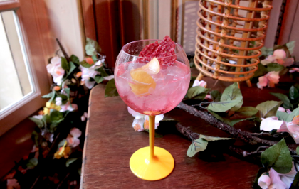Recette : Le Gin Tonic Hibiscus