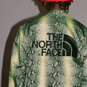 Collection North Face x Supreme